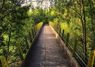 Trans Penine Trail