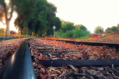 Αutumn Railway Tracks (Bo.Th) Tags: