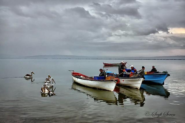 Manyas Gölü . . .