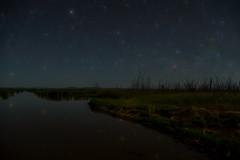 Starry Night DSC_0814 (BlueberryAsh) Tags: landcapes wintonwetlands glamping nightscape nikond750 nightphotography night stars starry sky water swamp benella nikon24120 landscape