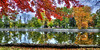 (DeZ - light painter) Tags: guelphcanada royalcitypark reflection autumn fall trees colour hdr nikon nikond610 nikkor1424mmf28 nikkor dez