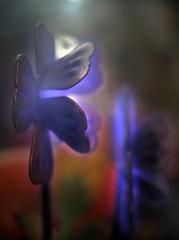 Neon Jungle 2 (Sea Moon) Tags: aerolux bulb neon metal phosphor argon lightbulb novelty flowers glow plasma ionized