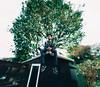Christian Panorama (Adam Pietraszewski) Tags: epic brenizer panorama bokeh bokehlicious bokehrama green portrait jcole roof sitting tree wideangle shallow depth field blur streetwear hoodie garden garage rooftop person tall afro guy