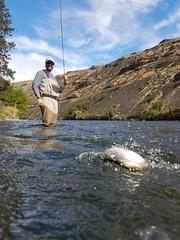 20171001_111438 (Red's Fly Shop) Tags: wadefishing nymphfishing flyfishing301 yakima river