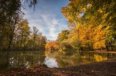 Englischer Garten Herbst Impressionen (drummerwinger) Tags: rot tokina canon80d wolken blätter autumn see water bach kanal laub