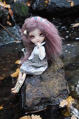 .: Morwën :. (.: Miho :.) Tags: pullip pullipdoll doll dolls dollphotography pullips pullipphotography obitsu junplanning elfiquelunatique fcbyelfiquelunatique