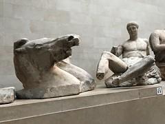 IMG_1805 (Andy961) Tags: uk england london britishmuseum museums elginmarbles greek sculpture antiquties