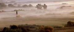 foggy morning (maria xenou) Tags: foggy morning moments momente greece griechenland morgens neblig nebel landschaft landscape nature natur ομιχλη πρωι τοπιο στιγμεσ ελλαδα πελοποννησοσ νηλειασ φυση