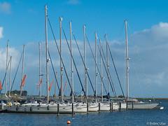 Sailboats (✦ Erdinc Ulas Photography ✦) Tags: sailboat boat sail zeil zeilboot boot nederland dutch netherlands water lake orange buoy boei oranje hoorn wind sky blue meer ngc