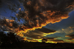 Gold Dusk (Kevin_Jeffries) Tags: gold kevinjeffries silhouette tree clouds nikond7100 nikkor lens raw red light spectacular sunset newzealand glorious skyscape