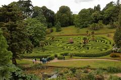 Glendurgan Maze (Mike.Dales) Tags: glendurgangarden maze nationaltrust cornwall england