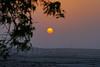 Sunset over Bahrain desert (Andrey Sulitskiy) Tags: bahrain