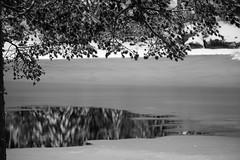 IMG_0023 (www.ilkkajukarainen.fi) Tags: nuuksio espoo visit happy life winter snow ice cold centralpark suomi100 eu europa scandinavia suomi suomifinland100 lumi ensi kansallispuisto finland finland100 froze frozing jää jäätyminen järvi jäätyy jaana heijastuma metsä forest