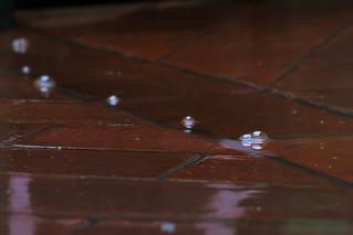 Rain bubbles