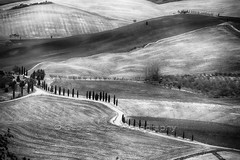 Country Road in Val D'Orcia, Tuscany, Italy (George Oze) Tags: bw tuscany valdorcia agriculture atmospheric blackandwhite countryroad countrycountryside cypresstrees daytime europe fall farm farmbuilding field fineartphotography geometricpatterns highangleview horizontal italy layeredcomposition nopeople nobody outdoors ploughedfield rollinghills scenic travel it