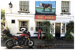 Visiting the local wildlife [Explored] (The Stig 2009) Tags: yamaha mt09 tracer adventure style bike motorbike essex pub theydon bois village thestig2009 thestig stig 2009 2017 tony o tonyo explore explored