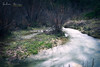 [ #275 :: 2017 ] (Salva Mira) Tags: amadorio relleu riu rio river stream water aigua agua marinabaixa lamarina paísvalencià salvamira salva salvadormira