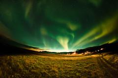 Aurora borealis in Iceland (Zeeyolq Photography) Tags: auroraborealis auroresboréales iceland islande landscape nature night northernlights stars étoiles vesturland is