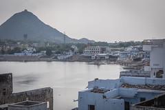 Rajasthan - Pushkar - City view-2