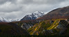 Along the Richardson Hwy (bxfmj) Tags: richardsonhwy landscape mountain alaska fall clouds color wildness field glacier