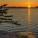 Juniper Sunset thumbnail