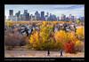 A morning walk on a bright autumn day along McHugh Bluff, Calgary, Alberta (kgogrady) Tags: autumn dog fall landscape mchughbluff people walk calgary alberta canada yyc skylinepictures westerncanada trees skyline xt2 sunny xf18135mmf3556oiswr thebowtower skyscrapers skylinephotos canadianlandscapes fallcolours buildings canadiancity canadianskyline cans2s fujifilm calgarypictures calgaryphotos cityscape ab fallcolors 2017 fujifilmxt2 clouds fujinon
