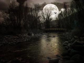 Night Owl Moon - Textured Duotone