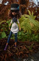 LRM_EXPORT_20171015_214709 (Violet Lightning) Tags: monster high ooak doll repaint remake top hat clawdeen wolf mattel custom