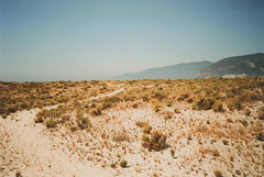 golden path (patinspirations) Tags: dunas serradaarrábida tróia setúbal portugal beach summertime film 35mm
