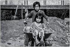 Portrait # 4 (bertranddorel) Tags: enfants noiretblanc blackandwhite street portrait jeux indonésie sulawésie toraja human nikon kids chidren groupe brouette village humain garçon fille bnw bw bn