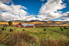 Vermont [Explored] (Nicholas Erwin) Tags: landscape rural farm redbarn barn field cows colorful autumn fall foliage sky bluesky clouds fence nature naturephotography harvest mountain nikon d610 2018g nikkor waterbury waterburycenter vermont vt unitedstatesofamerica usa america countryside fav10 explored fav25 fav50 fav100