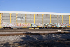 Vash Suey Lary Pout Rusle (Psychedelic Wardad) Tags: freight graffiti mf rusle nsf pout dts lary dirty30 d30 suey sws vash