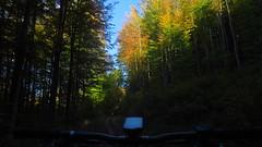 Heuberg (twinni) Tags: mw1504 15102017 bike biketour mtb heuberg salzburg austria österreich flachgau magura vyron bergziege winterbike winterradl 2o