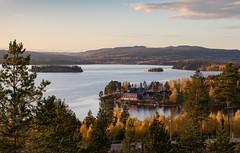Höstfotografering (Explore 2017-10-15) (nillamaria) Tags: fotosondag fs171015 hostfoto högakusten thehighcoast autumn sweden autumncolors