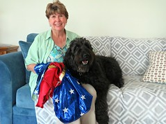 """It's the Little Things, like having our friend Anita come over and alter my Wonder Woman Halloween costume.""  by Benni Girl (Bennilover) Tags: friends friend doglover alterations sewing costume wonderwoman dogs labradoodle howloween yappyhour comfortable benni bennigirl"