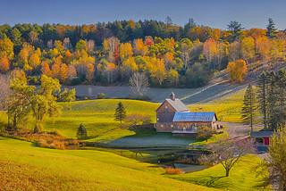 Foliage in Vermont (Explored)