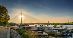 Ada-Bridge-Sunset-1 (Predrag Mladenovic) Tags: belgrade sava river ada bridge newrailway gazela sunset twilight reflections citylights