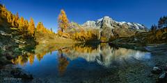 Lac bleu, Arolla (Switzerland) (christian.rey) Tags: lacbleu arolla valais suisse switzerland schweiz wallis herens val lake see omtagne mountain alpes alps dentdeveisivi dentdeperroc aiguilledelatsa tsa veisivi perroc panorama landscape paysage sony alpha a7r2 a7rii 1635