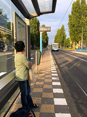 bus stop on Vrijheidslaan (jovike) Tags: amsterdam bus busstop city espe holiday iphoto netherlands street tracks transport travel tree woman