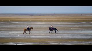 Marée basse [Explore]