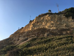 (sergei.gussev) Tags: los angeles county california usa del cerro park rancho palos verdes silver spur rolling hills portuguese bend peninsula east trump national golf club coastal zone shoreline royal palms state beach san pedro white point nature preserve fermin