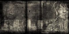 The Grand Ballroom (WayneToTheMax) Tags: ballroom film black white sepia woman nikon d750