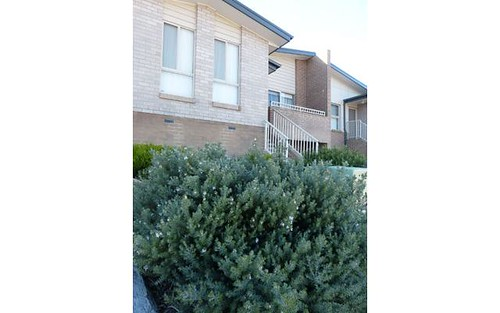 12 Mick Shann Terrace, Casey ACT 2913