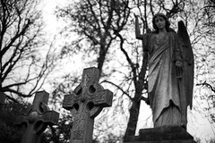 Crosses, angel. (Realchemyst) Tags: angel black branch bright burial catholicism cemetery christianity church churchyard cross dead death europe fresh green headstone inscriptions ivy leaf medieval memory monument old plant religion religious sad statue stone