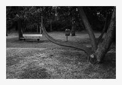 9917 by maerleanders -