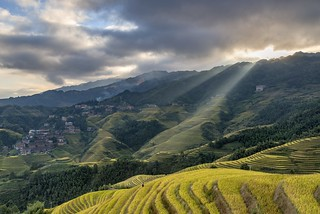 *Longsheng rice terraces*