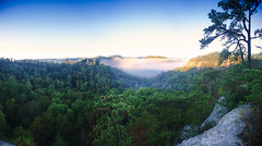 Morning Fog on Half Moon Arch (Media Hero) Tags: adventure appalachians autumn campsite campers camping cliff clouds detroitphotographer mediah detroit photographer marke detroit videographer marke fog friends fun gorge gorilla halfmoonarch hiking hills kentucky markeinhaus mediahero mediahero metrodetroit ma metrodetroit photographer  metrodetroit videographer  morning outdoors park redrivergorge summer tents trails trees valley slade usa us detroitphotographer mediahero detroit photographer markeinhaus detroit videographer markeinhaus mediahero metrodetroit markeinhaus metrodetroit photographer markeinhaus metrodetroit videographer mediahero