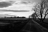 roads were made for journeys not destinations (N6ra) Tags: go where you feel most alive scotland nature road way trip travel bw roads were made for journeys destinations