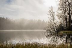 Peltolammi (Markus Heinonen Photography) Tags: peltolammi järvi lake luonto nature sumu usva fog mist tyyni tampere suomi finland waterscape