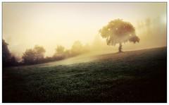 IL BELLO DELLA DOMENICA... (ROSSO (senza sfumature)) Tags: domenica della bello il